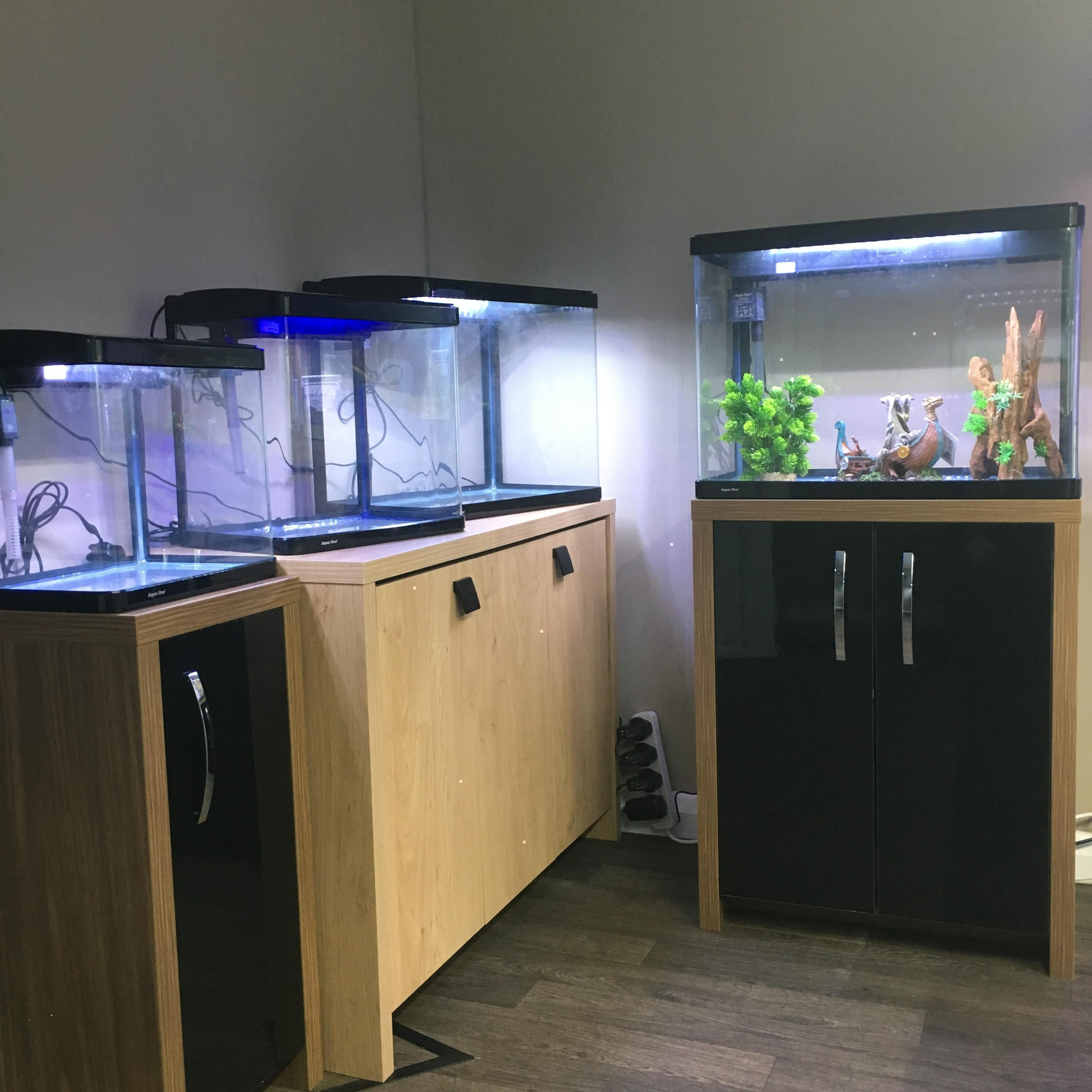 Add a heater for Tropical Fish